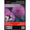 EVO Paper A6, 115г  100арк., глянцевий (22758)